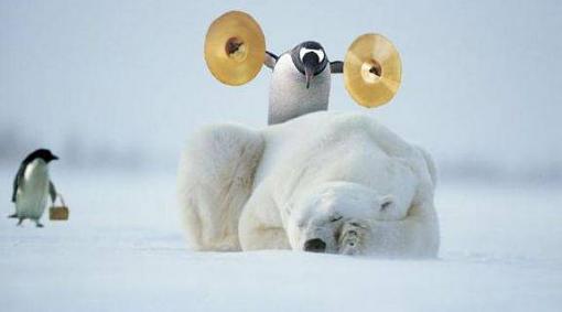 Extended Warrenty Paid Off!!!-penguin.jpg