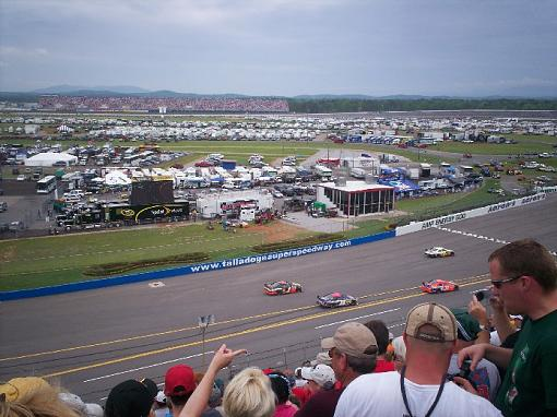 Do you like to watch Motorsports?-talladega.jpg