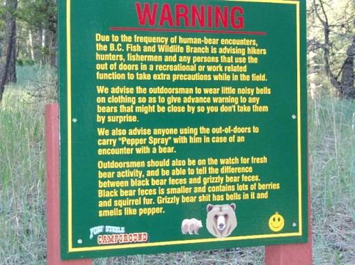 Hey GM.  Didn't I see this sign in front of your house?-bear-warning.jpg