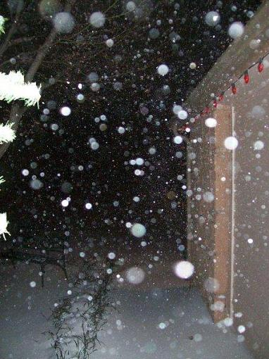 White Christmas-whitechristmas2009.jpg