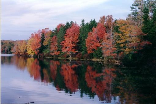 Fall color-promisedland.jpg