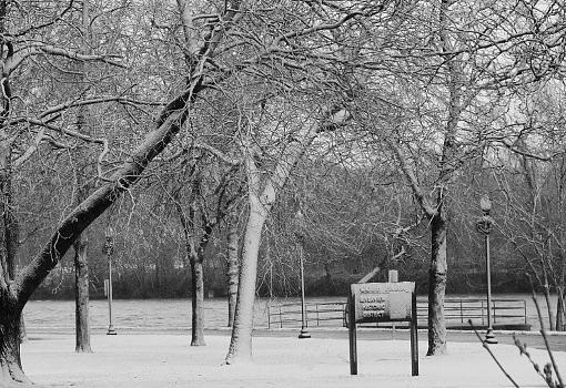 A few more pictures-cobb-park-2.jpg