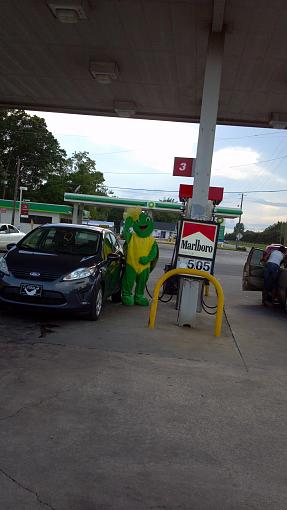 Yesterday I saw this turtle pumping gas.-2013-06-25_18-00-26_770.jpg