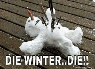 Name:  Die winter.jpg Views: 87 Size:  22.3 KB
