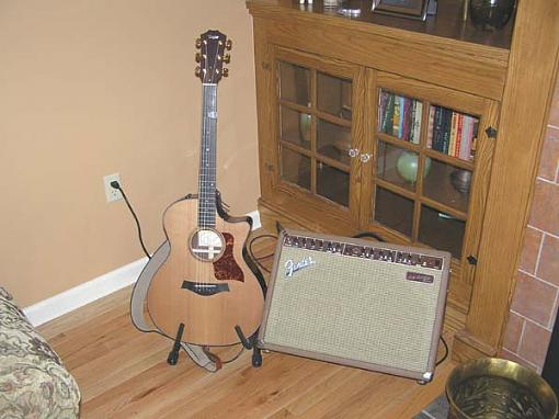 Fellow guitar players: Check out my new additions.-p3260032.jpg