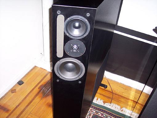 I finally pulled the trigger!!!!!!!! My lil' (long) audio love story. :)-000_0584.jpg