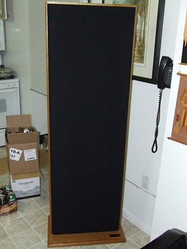 Flip Maggies for Acoustat???-acoustat2200.jpg