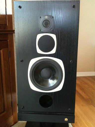 Info on older Castle speaker-img_0158.jpg