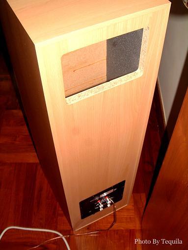 what is transmission line speaker-az-2-pic.jpg