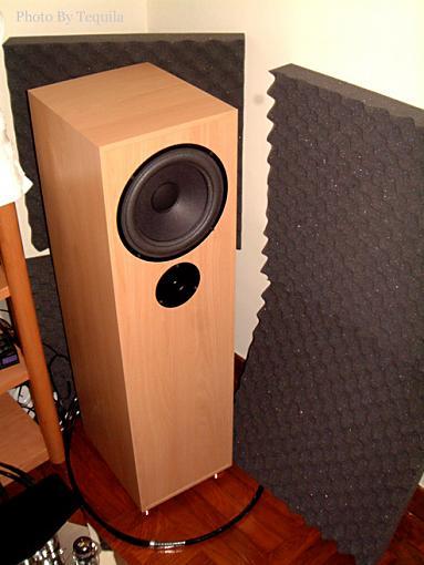 what is transmission line speaker-az-pic-3.jpg